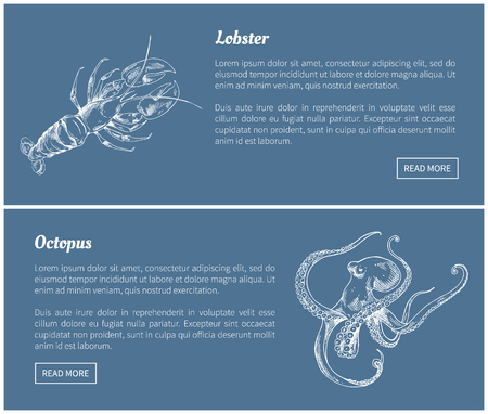 Octopus and lobster seafood vector vintage icons. Hand drawn set, decorative images of ocean animals isolated on blue restaurant menu template sketch.