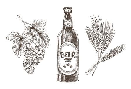 Ingredienti della birra isolati con grappoli di luppolo e grano