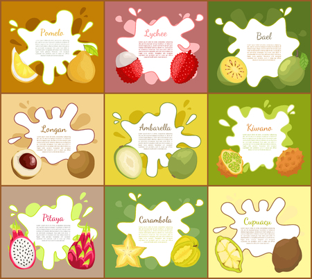 Pomelo and lychee, longan and pitaya, bael and ambarella. Cupuacu and kiwano, carambola tropical exotic fruits posters set with text sample vector Illustration