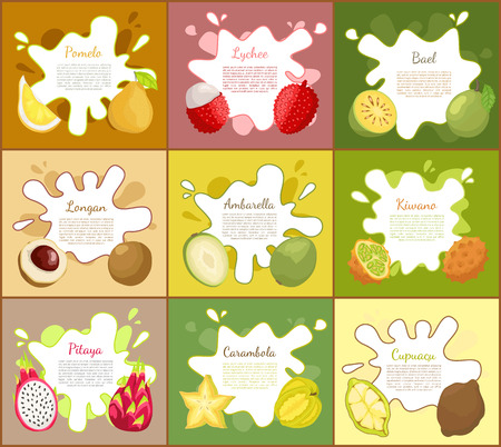 Pomelo and Lychee Posters Set Vector Illustration Stock Photo