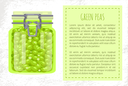 Green peas preserved food in unlabeled glass jar with metal clip cap. Green pickled legume homemade conservation vector illustration poster, text sample