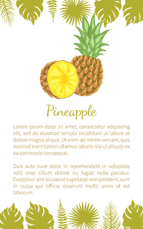 Pineapple tropical plant, edible multiple fruit vector poster text sample and palm leaves. Tropical food, dieting vegetarian exotic item with vitamins Ilustração