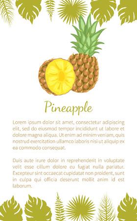 Plante tropicale d'ananas, échantillon de texte d'affiche vectorielle à plusieurs fruits comestibles et feuilles de palmier. Nourriture tropicale, article exotique végétarien suivant un régime avec des vitamines