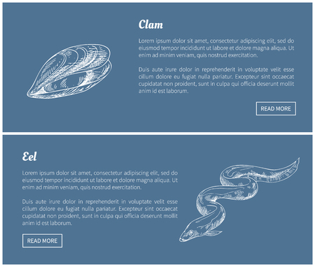 Eel and Clam Seafood Vector Vintage Illustrations Illustration