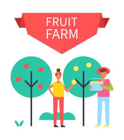 Fruit farm poster with harvesting people gathering ripe products from trees. Man with bucket and woman holding apple in hands farming persons vector