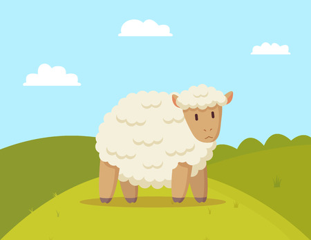 Fluffy sheep walking on meadow colorful poster, vector illustration of pretty domestic animal with soft wool, sunny day and bright sky with clouds
