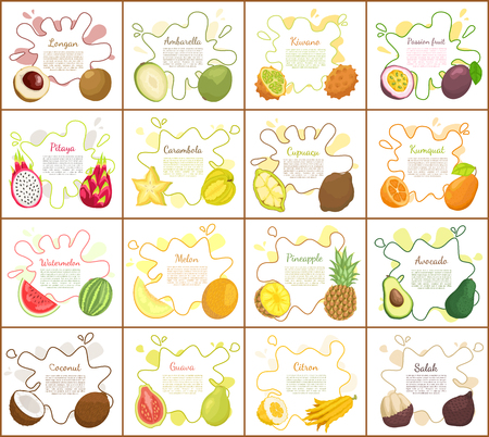 Sugar Apple and Durian Slices Vector Illustration 向量圖像