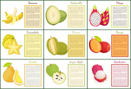 Banana and Ambarella Durian Apple Posters Vector