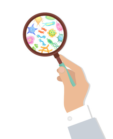 Bacteria in magnifying glass held by human hand. Microorganisms set shown by examination and analysis. Pathogen molecule detection isolated vector  イラスト・ベクター素材