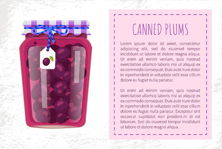 Canned plums in glass jar with tag on lace tied to pot. Fruit conservation and storage in container. Canning of food for winter poster and text vector