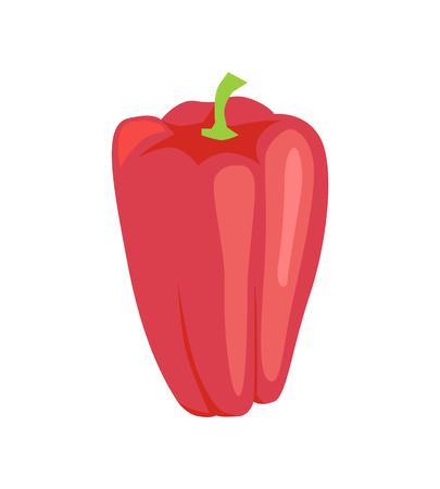 Pepper Raw Fresh Vegetable Vector Illustration
