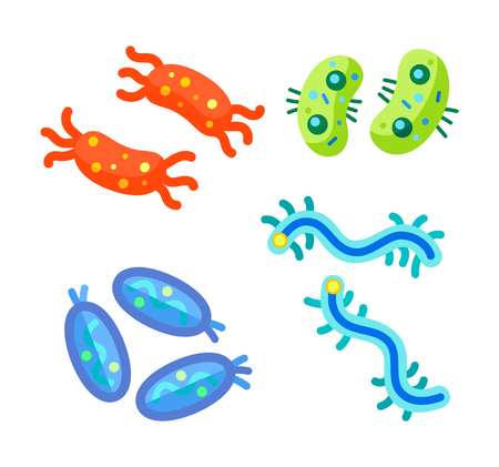 Crab and bean shaped bacteria, oviform and curly microbe through microscope isolated. Miniature life form germ cartoon projections pictoral poster.