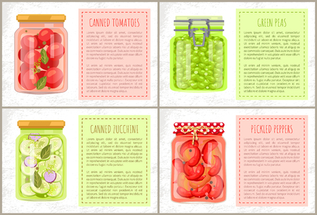 Canned tomatoes and zucchini, pickled peppers and conserves green peas poster with homemade conservation. Preserved food jars and text sample box. Illustration