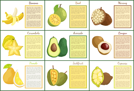 Banana and bael posters set with text sample vector. Tropical fruits longan, mamey and cupuacu, durian and pomelo avocado and carambola star slice