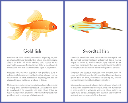 Red goldfish and colorful swordtail fish isolated on white. Freshwater aquarium fish icons on blank background in cartoon style vector illustration