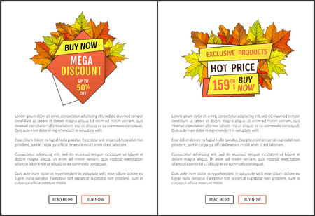 Exclusive products buy now at super hot price 159.90 promo poster with oak and maple leaves, text. Autumn season discounts on Thanksgiving day vector