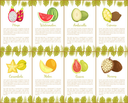 Pitaya and watermelon fruits set of posters with text sample vector. Carambola and melon guava and marang, nutritious lush slices of exotic products Stock Vector - 127385956