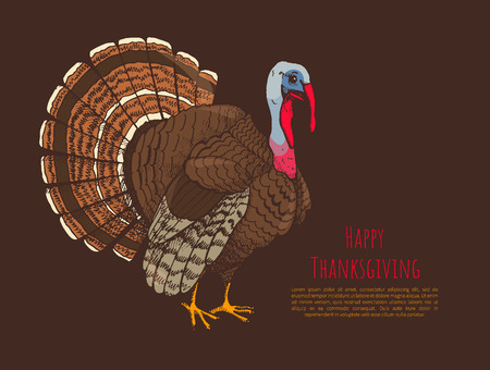 Happy Thanksgiving Day Poster with Animal Vector Stock Photo