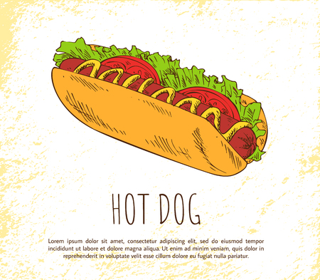 Hot dog icon isolated on bright background banner, vector illustration of delicious bun with sausage smeared with mustard, fresh salad and tomatoes