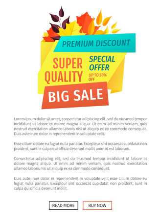 Super Quality Big Sale Poster Vector Illustration 矢量图像