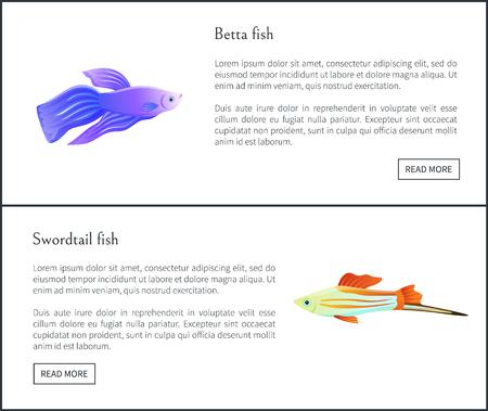 Betta and Swirdtail Fish Set Vector Illustration