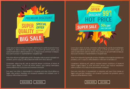 Premium discount hot price exclusive autumnal offer posters set. Decreased prices quality products and reduction on goods. Seasonal promotional vector