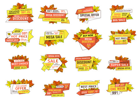 Best choice special promotion discount on Thanksgiving day, exclusive offer buy now label with oak tree leaves. Vector autumn sale emblems yellow foliage