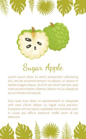 Sugar-apple, sweetsop, or custard apple, Annona squamosa, exotic juicy fruit vector poster text sample and leaves. Tropical edible food, dieting veggies