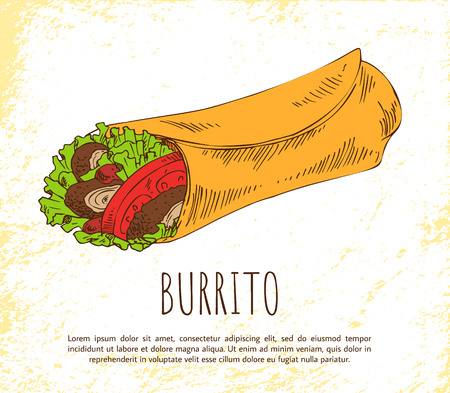 Burrito snack isolated on white vector poster, image of fast food, wrapped into tortilla green salad with sliced meat and tomatoes, mexican appetizer Vector Illustration