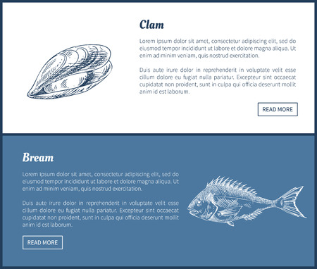 Clam Bream Fish Posters Set Vector Illustration  イラスト・ベクター素材
