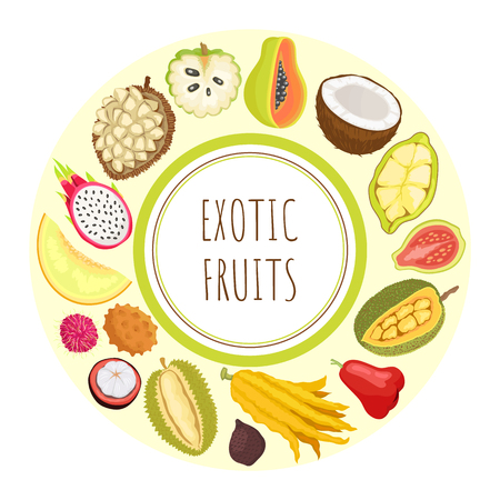 Exotic fruits durian and sugar apple vector. Guava and citron, lychee and rambutan, marang and pitaya, coconut and cupuacu organic food tropical meal Çizim