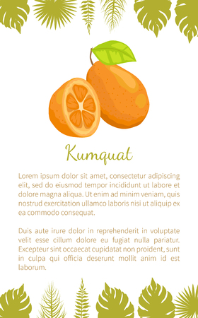 Kumquat Exotic Juicy Fruit Vector Poster Text Leaf