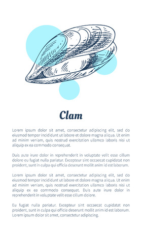 Small clam Marine Creature Poster in Sketch Style
