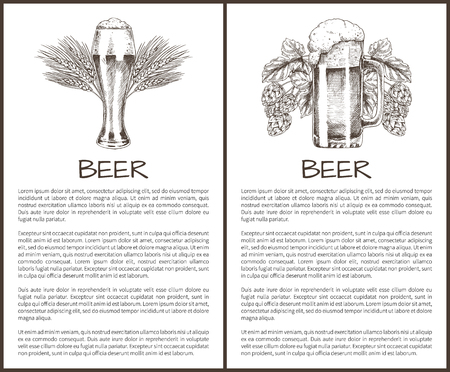 Beer objects set hand drawn vector sketches. Full tumblers with flowing foam with barley and hop vintage illustration poster, template for bar menu 向量圖像