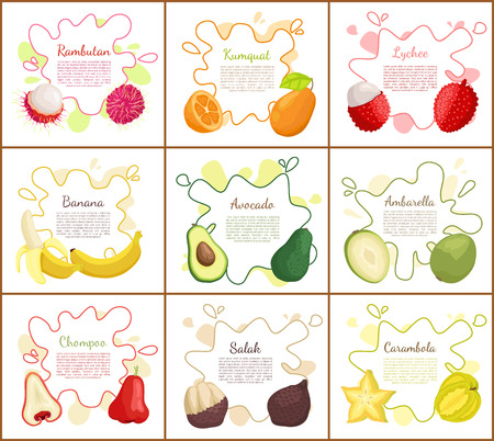 Rambutan and banana, avocado and lychee posters set with text sample. Kumquat and delicious chompoo, ripe salak. Tropical exotic organic fruits vector Ilustração