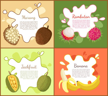 Marang and rambutan, jackfruit and ripe banana set of posters with text sample. Healthy succulent tropical fruits, nutritious exotic products vector Ilustração
