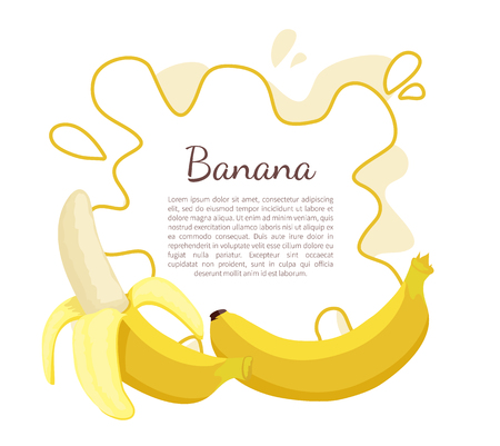 Banana poster with frame and place for text. Exotic juicy ripe yellow fruit berry, vector isolated. Tropical edible food, dieting vegetarian icon