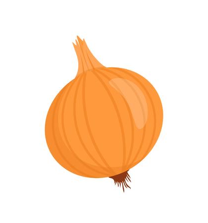 Cebolla Aislada Insignia Vector De Dibujos Animados Vegetales