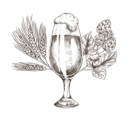 Hop Brunch and Beer Goblet Vector Illustration