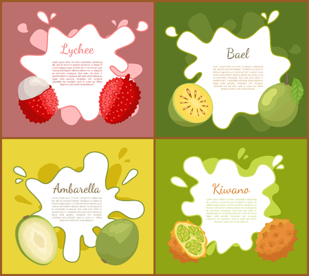 Lychee and Bael Ambarella Set Vector Illustration