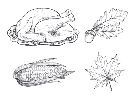 Turkey Dish and Maple Leaves Sketches Set Vector