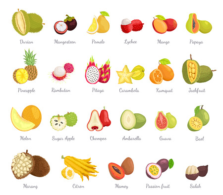 Sugar Apple and Guava Set Vector Illustration