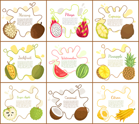 Marang and jackfruit, posters with information on blot. Rambutan and watermelon, pineapple and citron, sugar apple and cupuacu lush slice vector 向量圖像