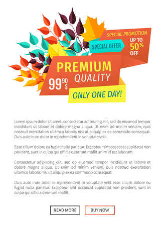 Premium quality buy now poster with text sample. Super discount sellout and clearance autumnal decoration of banners special promotion shopping vector Standard-Bild - 113103701