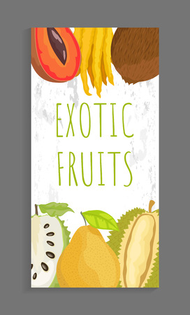 Mamey and citron, coconut and sugar apple, pomelo and durian whole and cut tropical fruits on vector leaflet. Exotic ripe veggies isolated on banner