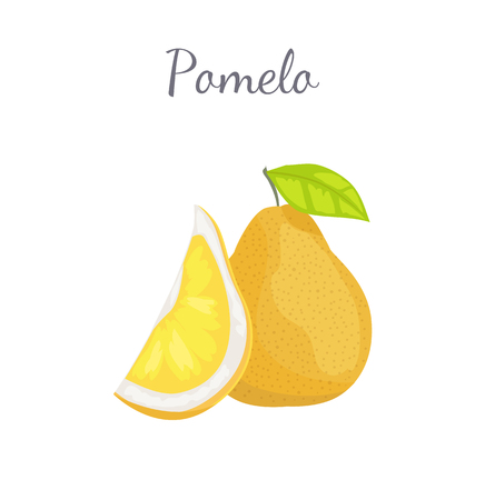 Pomelo exotic fruit whole and cut vector isolated. Tropical food, similar in appearance to grapefruit or pear, dieting vegetarian citrus with leaf