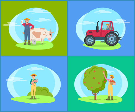 Farmer with cow domestic livestock cattle and small piglet. Farming woman, lady harvesting apples from fruit tree into wicker basket pannier vector Illustration