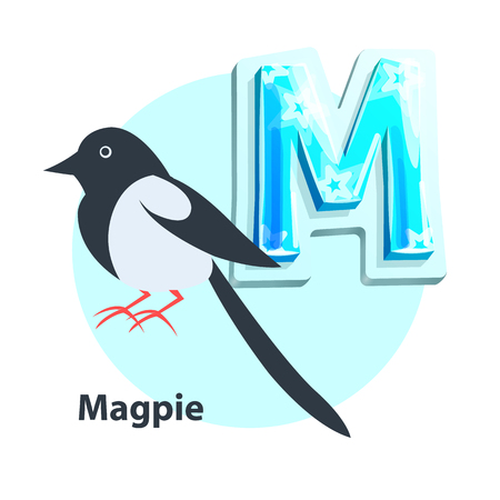 Magpie little black-and-white bird presenting M letter in english alphabet. Children ABC element with vector cartoon character and uppercase char. Illustration