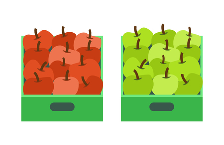 Apple shop, plastic containers with fruits in market vector. Icons of flat style, healthy organic food eaten by vegetarians and vegans. Dieting meal Illustration