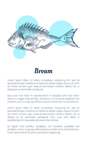 Bream fish seafood vector hand drawn illustration. Decorative icon of ocean animal isolated on white with blue spots restaurant menu vintage template Ilustração